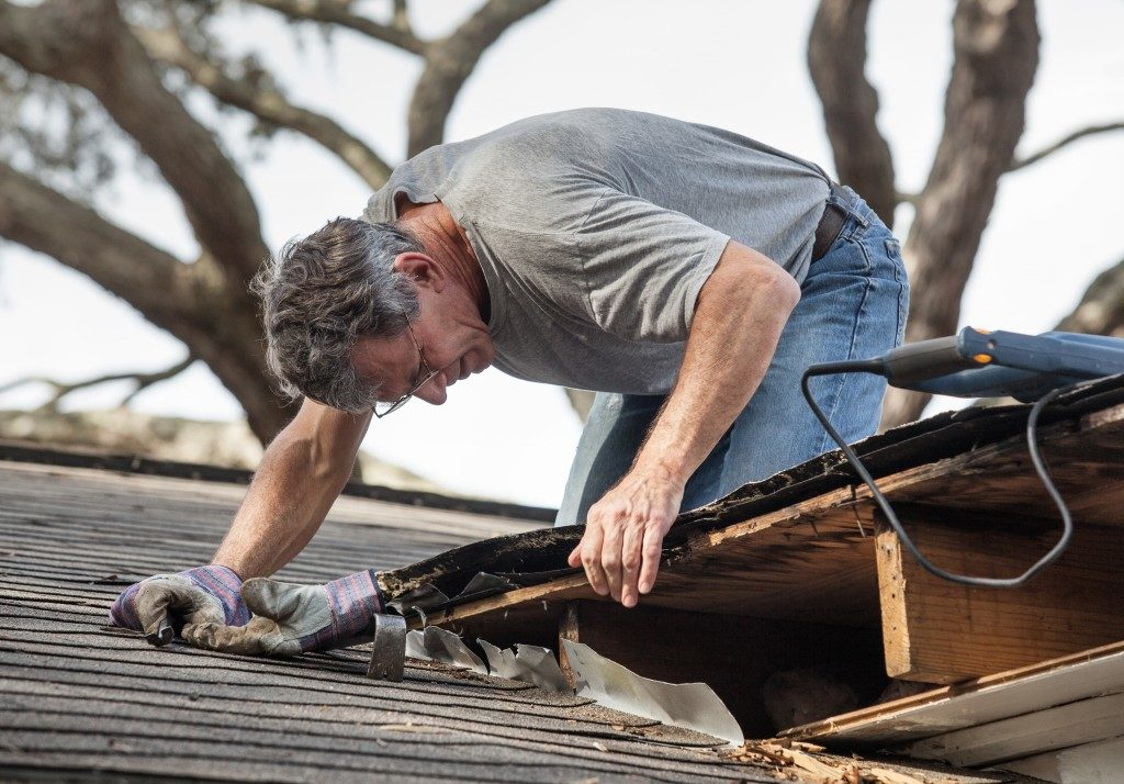 man using removing rotten wood from leaky roof